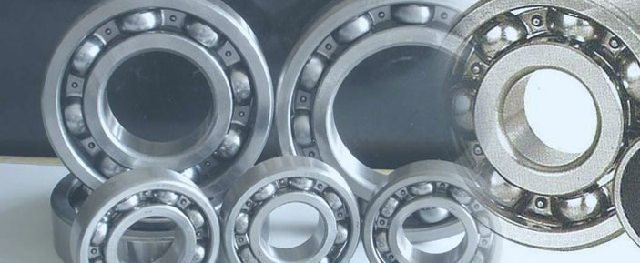 HCH Bearings Authorized Importer